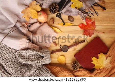 autumn leaves, an apple, cozy scarves and knitted sweaters, an e-book, flat, the concept of a hugg, winter or autumn mood #1516923983