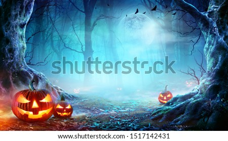 Jack O' Lanterns In Spooky Forest At Moonlight - Halloween  #1517142431