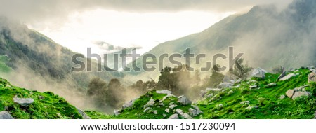 Forested mountain slope with the evergreen conifers shrouded in mist in a scenic landscape view at Mcleod ganj, Himachal Pradesh, India. #1517230094