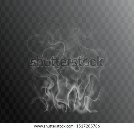 Transparent special effect of hot steam for cafe menu food, meal, tea, coffee, bbq and steak. Vector gas, smoke, fog, fume isolated on dark background. Realistic wavy elements web, print, hookah promo