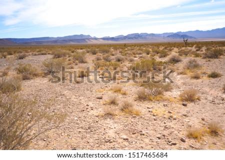 desert panoramic  pic  of mojave desert