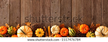Autumn bottom border banner of pumpkins, gourds and fall decor on a rustic wood background with copy space Royalty-Free Stock Photo #1517476784