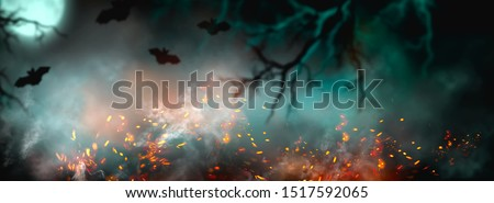 Fantasy Halloween Background. Beautiful dark deep forest backdrop with smoke, fire, vampire bats. Halloween magic holiday collage Art design, mysterious Frame. Copy space for your text. Wide screen #1517592065