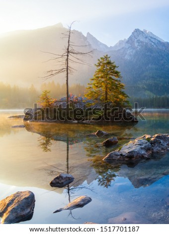 Majestic morning scenery on Hintersee Lake. Beautiful scene of trees on rocky island. Location place: Resort Ramsau, National park Berchtesgadener Land, the Alps, Bavaria, Germany.