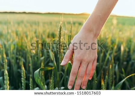 Female hand landscape nature leisure travel leisure #1518017603