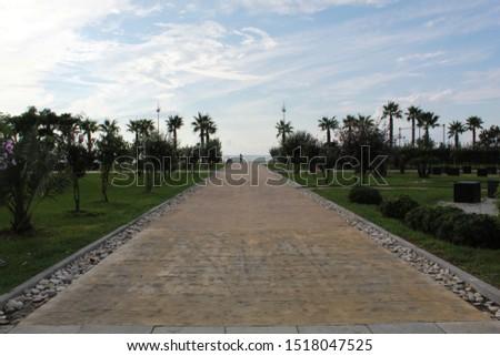 A symmetric capture of a park next to a beach. #1518047525
