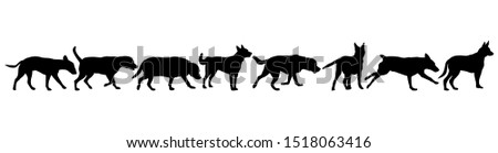 Set silhouette dog on a white background