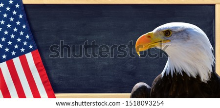 Bald Eagle and American flag with copy space.