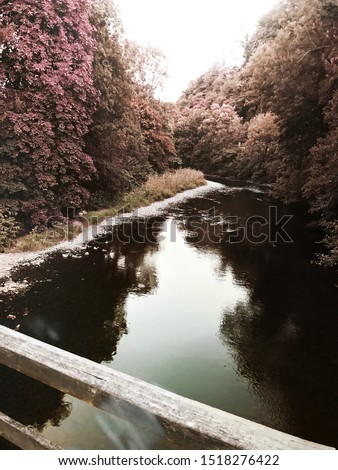 Wood Bridge in the Forest, Pink/Green Trees  and the Turquoise River