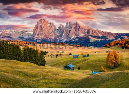 Unbelievable sunrise on Alpe di Siusi mountain plateau with beautiful yellow larch trees and Langkofel (Sassolungo) mountain on background. Autumn evening in Dolomite Alps, Ortisei locattion, Italy. #1518435896