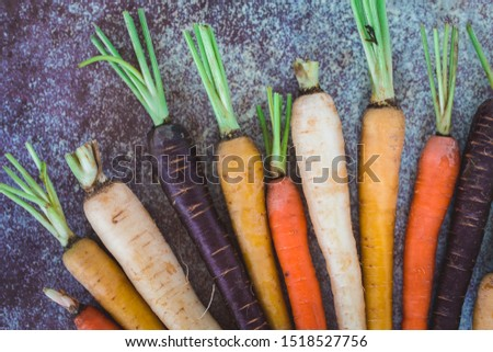 Rainbow Colored Carrots With Tops #1518527756