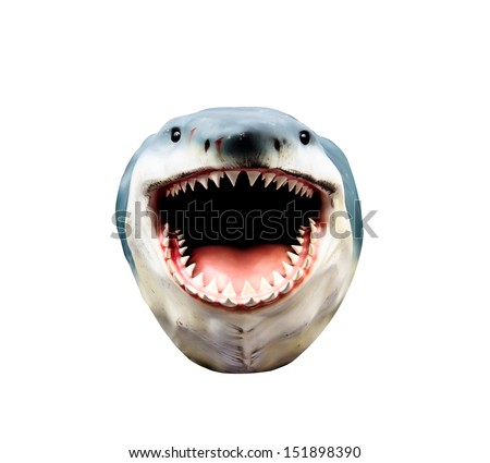 shark head model isolated on white background