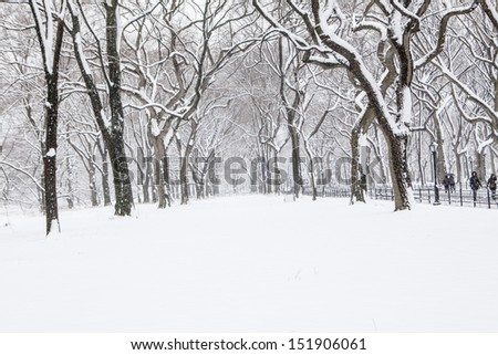 Winter in New York #151906061