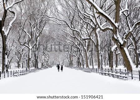 Winter in New York #151906421