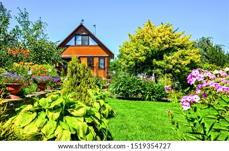 Summer cottage garden scene. Cottage garden in summer. Cottage garden flowers summer scene. Cottage garden flowers view #1519354727