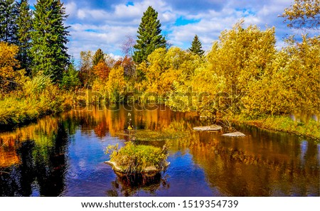 Autumn forest river trees landscape. Autumn forest river view. Autumn forest river water. Autumn forest river water reflection view #1519354739