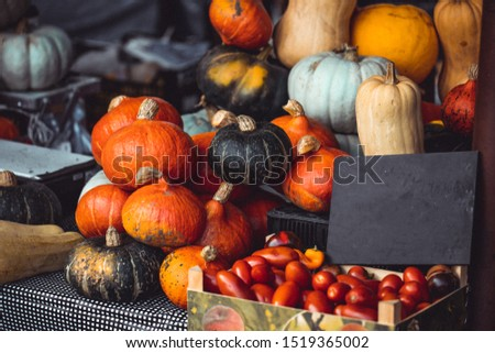 Different color pumpkins on outdoor market table, autumn food  #1519365002