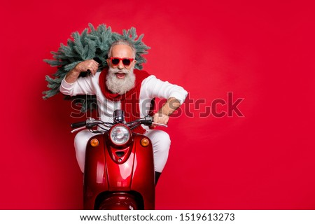 Portrait of cheerful pensioner carrying fir tree having eyeglasses eyewear drive bike wearing white jumper isolated over red background #1519613273