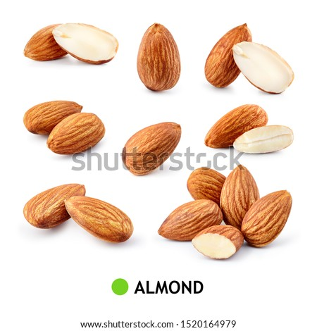 Almond isolated. Almonds on white background. Almond set. Full depth of field. #1520164979