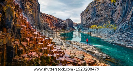 Tourist went to the bottom of canyon and admired the beauty of basalt columns. View from flying drone of Studlagil Canyon. Picturesque summer scene of Iceland. Beauty of nature concept background. #1520208479