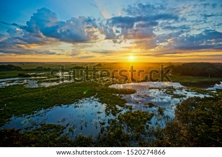 Sunrise in Pantanal, Brazil. Pantanal is the world's largest wetland #1520274866