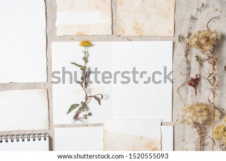 Blank greeting cards with dry flowers on rustic textile background for creative work design. Vintage wedding invitations. Overhead view. Flat lay, top view invitation card with copy space. Mockup  #1520555093