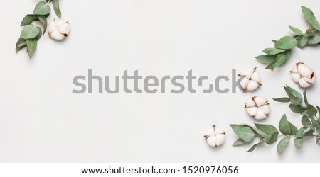 Flat lay flowers composition. Frame made of cotton flowers and fresh eucalyptus twigs on light gray background. Top view, copy space. Delicate white cotton flowers. Floral background, greeting card #1520976056