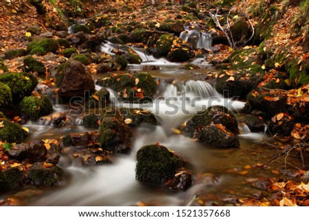 Amazing autumn landscape with long exposure waterfall and yellow leaves. Nature photograph, tranquil scene, serenity, nobody, tranquility, beauty in nature, moving, light, movement, Yedigoller. #1521357668