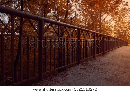 Empty bridge on sunset with a path. Metal fence with reflection of the sun and beautiful yellow leaves. Lonely road. Autumn photo. Perfect place for jogging. #1521513272