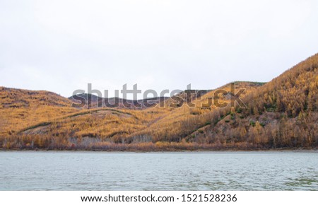 Beautiful landscape of wildlife, mountains with a river in the Taiga, cloudy autumn day. Coniferous forest and rocks. Gray sky. #1521528236