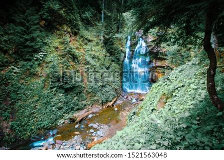 Park of waterfalls Mendeliha. Forest river and waterfall. Sochi. Rosa Khutor #1521563048