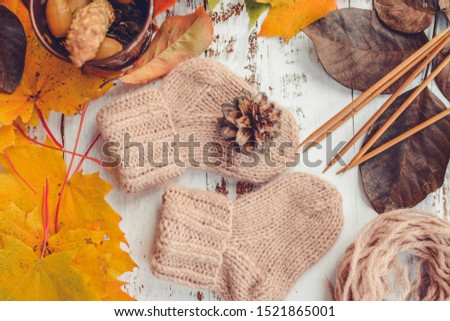 Small and soft newborn socks, made of woolen yarn, o white background, decorated with autumn leaves, nuts and cones #1521865001