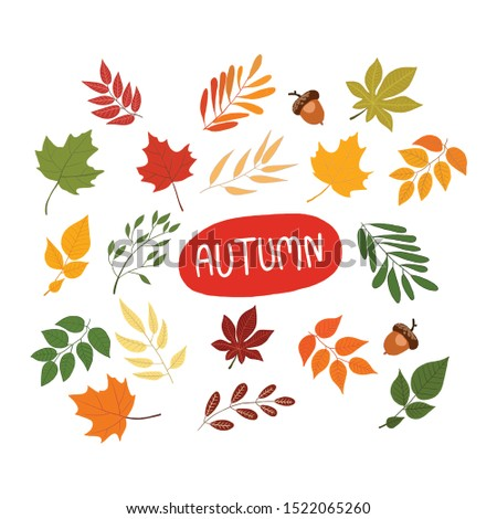 Set of different autumn elements. Perfect for wallpaper, gift paper, pattern fills, web page background, autumn greeting cards. Autumn pattern. #1522065260