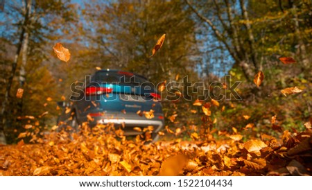LOW ANGLE, CLOSE UP, DOF: Large blue SUV drives along a road full of picturesque brown fallen leaves. Cinematic shot of dry leaves flying up in the air as the metallic blue SUV drives through forest. #1522104434