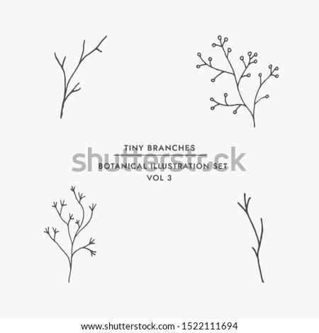 Tiny Plant Clip Art Elegant Hand Drawn Set - For wedding invitations, posters, blog posts, logos ,etc. #1522111694