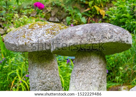 Two antique stone staddle stones, ornamental toadstools, in summer garden. Old, weathered stones covered with lichen and moss. Also called mushroom stones. Garden in Ireland. #1522229486
