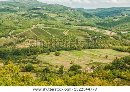Vineyards landscapes in the morning in Albola in the Chianti region. #1522344779