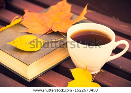 Ceramic Cup Of Tea And Closed Book With Autumn Colorful Leaves On Wooden Bench. Tea And Reading In Autumn Park Outdoors. #1522673450