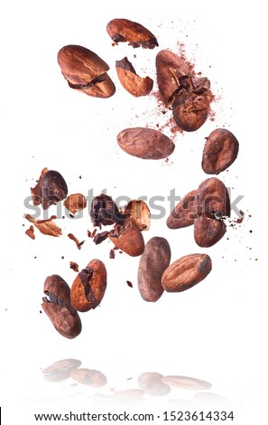Cocoa beans flying in the air. Cracked cocoa beans levitate on white background. High resolution image. Levitation concept. #1523614334