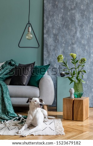 Modern scandinavian home interior of living room with gray sofa, wooden cube, flowers in vase, sculpture, pillows and elegant personal accessories. Stylish home decor. Dog lies on the carpet. Template #1523679182