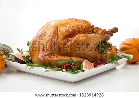 Garnished traditional roasted turkey for Thanksgiving, garnished with fresh figs, pomegranate, and herbs. On white background with pumpkins. #1523914928