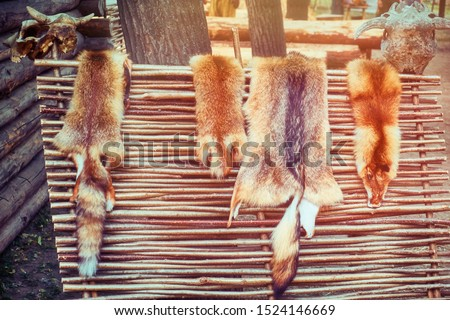 Rustic fence on which hunters dry tanned skins. Animal skins on wattle and cow skulls. #1524146669