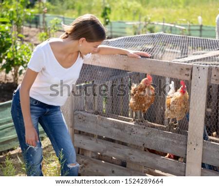 Farmer woman feeding chikens in a hen house #1524289664