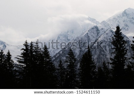 Impressive mountains covered with snow #1524611150