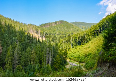 Carpathian Mountains landscape in the autumn season in the sunny day #1524657524