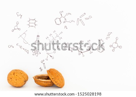 Concept of the phrase chemistry in a nutshell. Chemical formulas and symbols drawn on white paper with walnuts #1525028198