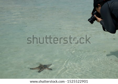 Photographers can take pictures of starfish in the sea while walking on the beach. In the Komodo Islands Indonesia