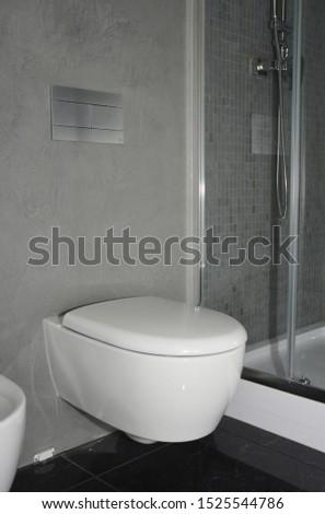 Modern bathroom with modern toilet bowl #1525544786