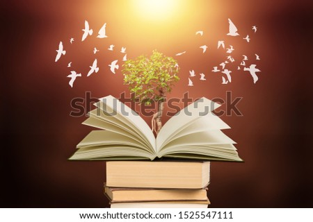 Education concept The growth of knowledge is represented by pictures of trees on the books, with birds flying around on that book. Is to lead the future of success #1525547111