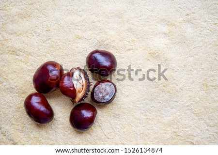 Chestnuts on beige background top view. Chestnuts on soft colours background. Chestnuts in autumn. Chestnuts top view #1526134874
